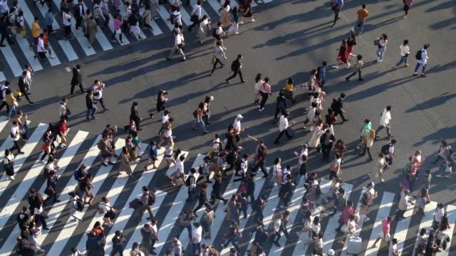 東京・渋谷交差点における群衆歩行者のslo moトップビュー - 交差点点の映像素材/bロール