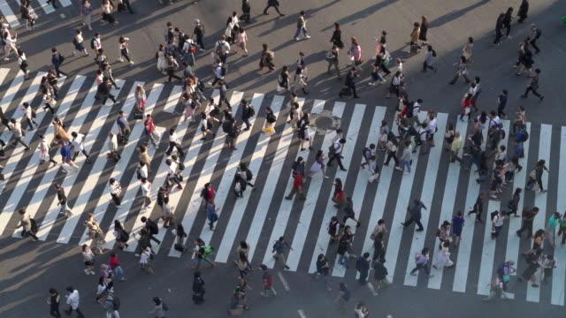東京の長い影を持つ渋谷交差点の歩行者のslo moトップビュー - 交差点点の映像素材/bロール