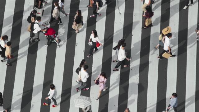 行人穿越銀座交叉口的頂視圖,在慢動作中帶有長陰影 - 澀谷交叉點 個影片檔及 b 捲影像