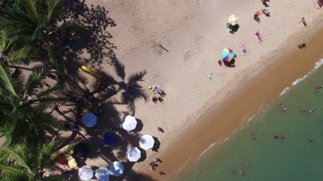 Top View of Praia do Forte beach, Bahia, Brazil video