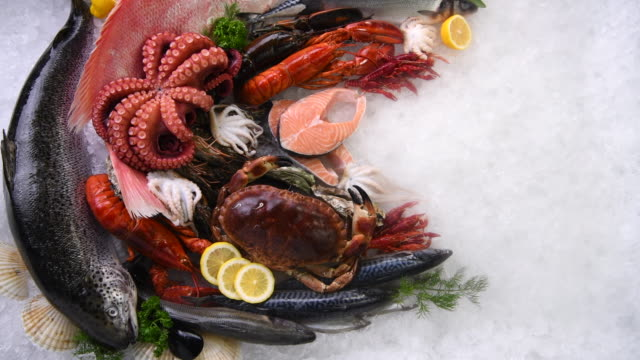 Top view of variety of fresh fish and seafood on ice with dry ice smoke. Variety of fresh seafood on ice. Fresh salmon, sea bass, red snapper, mackerel, crab, lobster, shrimp, black mussels, oyster, scallop and octopus on ice with ice smoke clouds. fillet stock videos & royalty-free footage