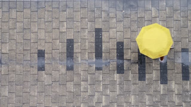 Top view on person with umbrella walking at street. Rainy day concept.