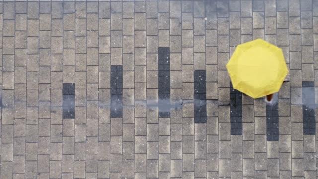 top view on person with umbrella walking at street. rainy day concept. - пешеходная дорожка путь сообщения стоковые видео и кадры b-roll