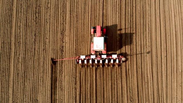 Top utsikt på röd traktor med rad gröda planter sådd solrosfrön i öppet fält video