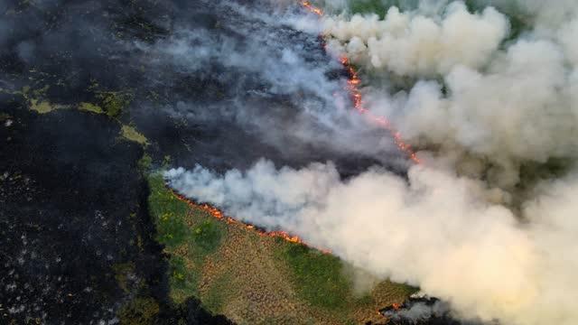 火のラインを持つフィールドの上のビュー - シベリア点の映像素材/bロール