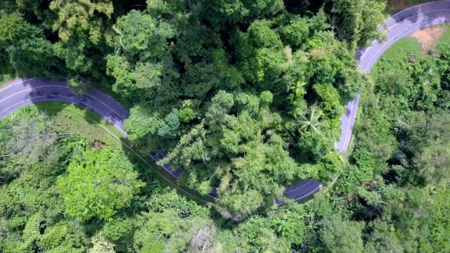 トップビュー 森と山の道、森を通るロードトリップ - 曲線点の映像素材/bロール