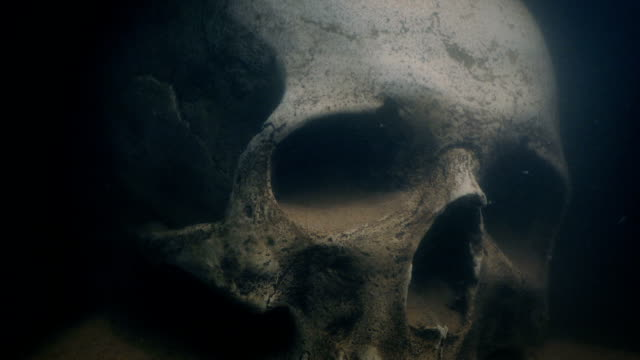 Torch Lights Up Skull Underwater Old human skull on the ocean floor is lit up with torch skull stock videos & royalty-free footage