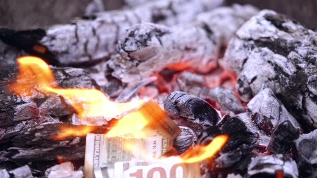 Torn american money burning in a fire.