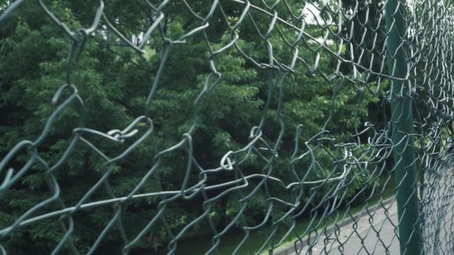 vídeos y material grabado en eventos de stock de una valla de eslabones de cadena atorada con un alambre verde. en el trasfondo de la carretera y el bosque de coníferas - valla artículos deportivos