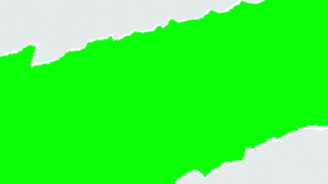 vídeos y material grabado en eventos de stock de rasgado de papel pantalla verde 2 en 1 - ripped paper