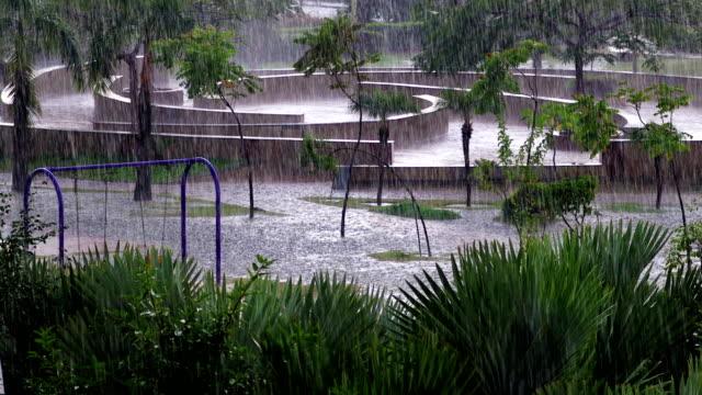 Torrential Rain! video