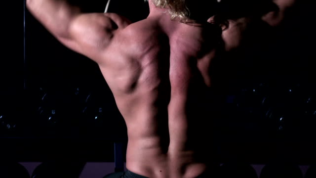 Torso of bodybuilder who is training in a gym with dumbbells, and up his hands video