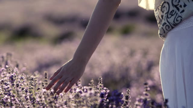 Touch of Lavender Scent video