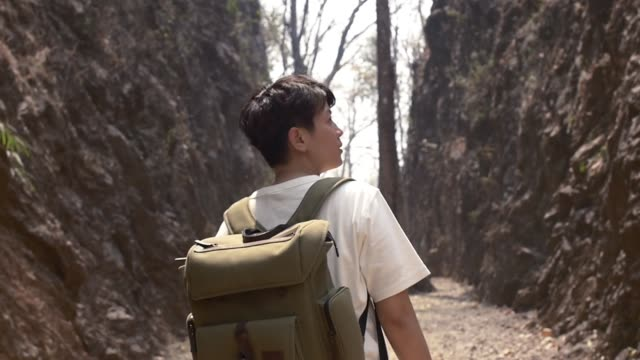 tourist asian giu walk in to rock moutain slow motion leaves in forrest video