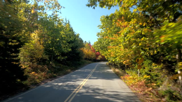 FPV: Tourist bus driving travelers across the Acadia National Park, Maine, USA video