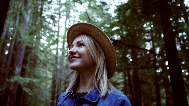 遊覽加利福尼亞紅杉 - 州立公園 個影片檔及 b 捲影像