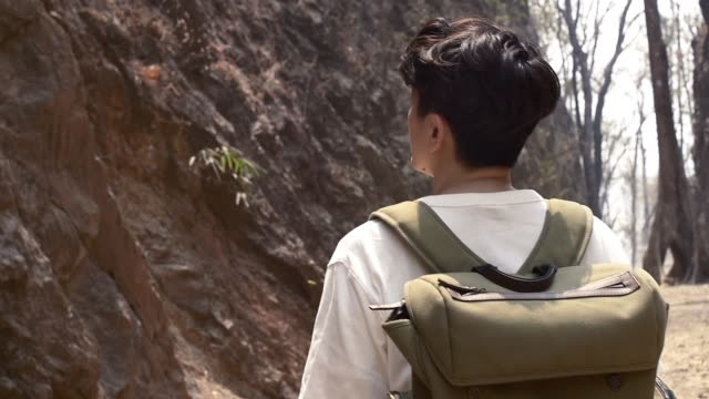 tourist guy walk in the rock moutain leaves slow motion emotional scene video