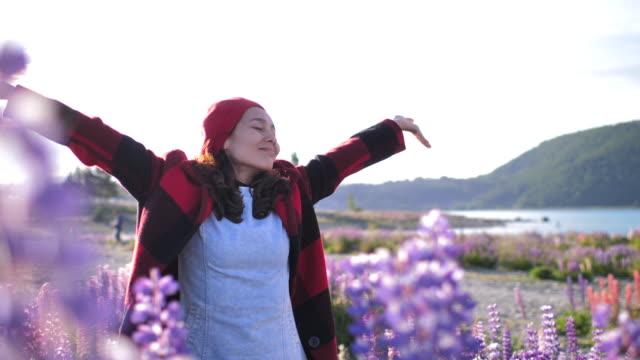 touristen, die arme in neuseeland eröffnet - lupine stock-videos und b-roll-filmmaterial