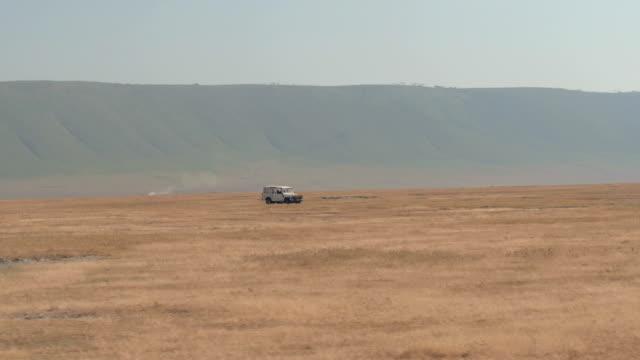 クローズ アップ ゲーム上観光サファリのジープは、ンゴロンゴロ火山クレーターの底でのドライブします。 - 乾燥点の映像素材/bロール