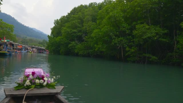 Tourist Travel; Tourism rowing boat Mangrove Forest at Koh Chang. Tourist Travel; Tourism rowing boat Mangrove Forest at Koh Chang Beach / Island, Thailand. 4K Resolution 10bit. duckweed stock videos & royalty-free footage