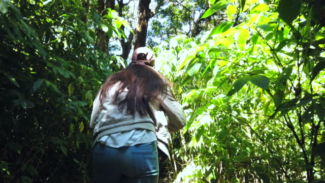 Tourist woman enjoy with beautiful jungles