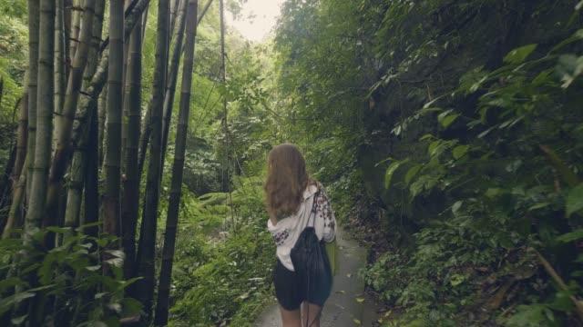 vidéos et rushes de femme de touristes marchant sur le chemin d'accès dans la forêt tropicale sur les arbres verts et végétaux antécédents. vue arrière itinérante jeune fille dans une forêt exotique parmi les arbres tropicaux et plantes à feuilles persistantes. - forêt tropicale humide