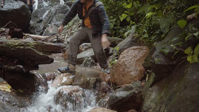 stockvideo's en b-roll-footage met toeristen die van de aard van het bos genieten. - er even tussenuit