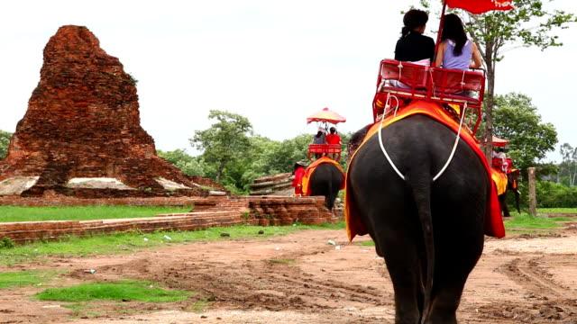 tourists ride on elephant video