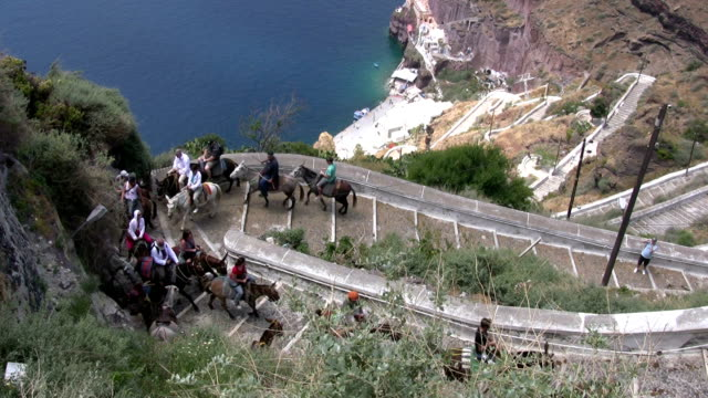 Tourists travel by donkey video