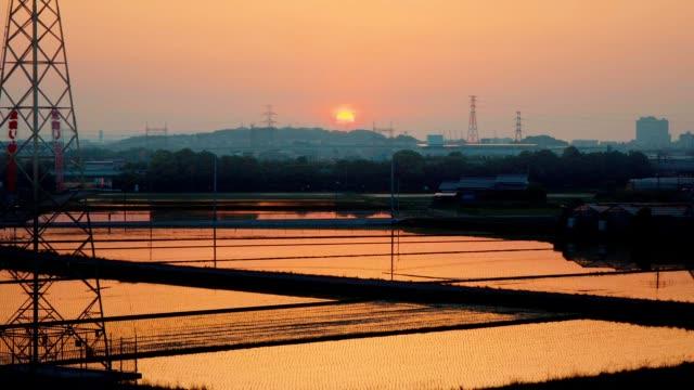 タワーと夕焼け、植える前に田んぼクローズ アップ - 水田点の映像素材/bロール