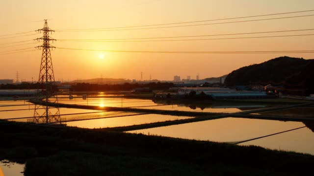 tower and rice field before planting in sunset - taras ryżowy filmów i materiałów b-roll