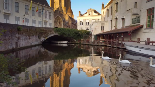 tower of church of our lady and buildings by canals of bruges, belgium - bruges video stock e b–roll