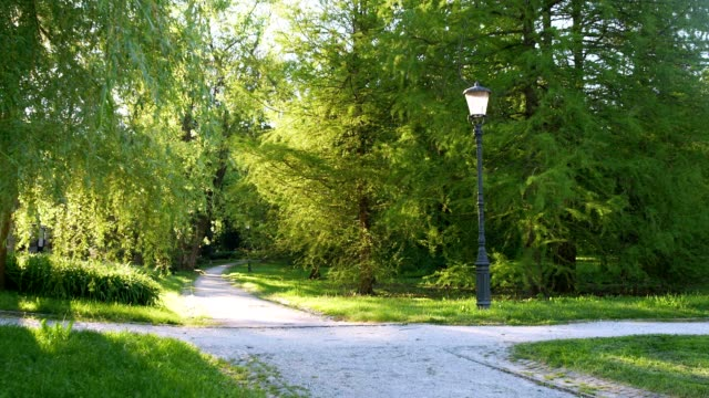 4 SEASONS Town park video