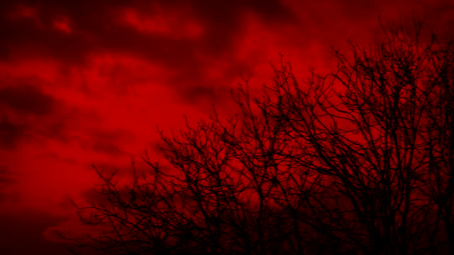 Toxic Red Sky Over Bare Dead Trees
