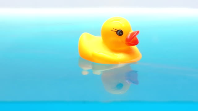 Toy duck floating on water, comfort bathing, shampoos and lotions for children