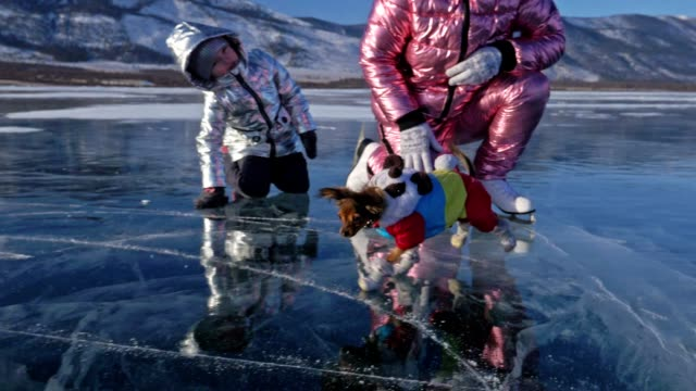 vídeos de stock e filmes b-roll de toy terrier in funny clothes and funny shoes plays with ball on beautiful ice in cracks. mom and daughter in sports clothes and figure skates. girls throw toy to dog. dog play game. - lago baikal