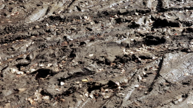 Traces of cars on the road Very dirty dirt road and traces of shoes and tires on it mud stock videos & royalty-free footage