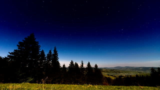 traces of stars against the night sky, shot long exposure.