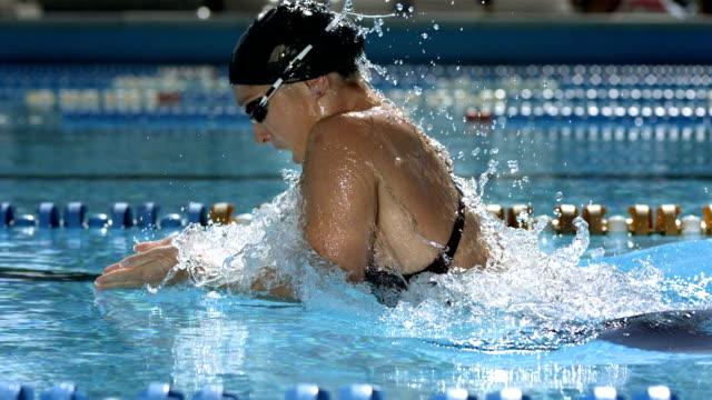 vídeos de stock, filmes e b-roll de hd câmera lenta: captura de uma mulher nadando nado de peito - natação
