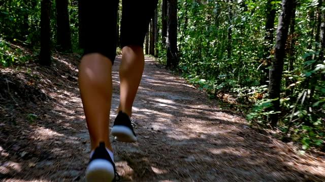 tracking kameran av kvinna flicka kör jogging i park, trä, skog, slowmotion - gångstig bildbanksvideor och videomaterial från bakom kulisserna