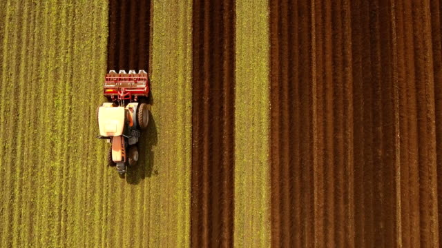 tractor cultivates the land in the field - trattore video stock e b–roll