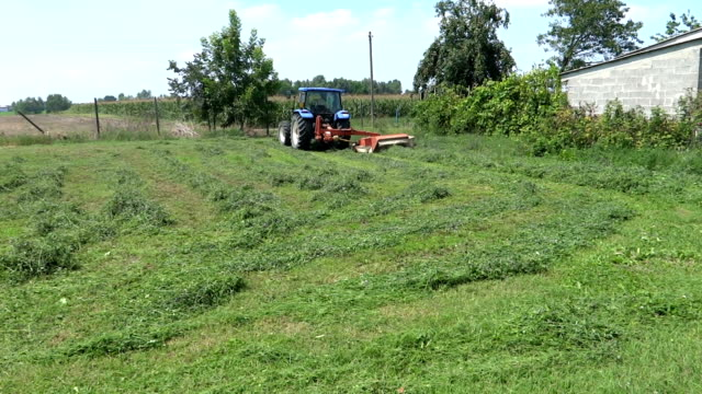 Tractor cutting the grass video