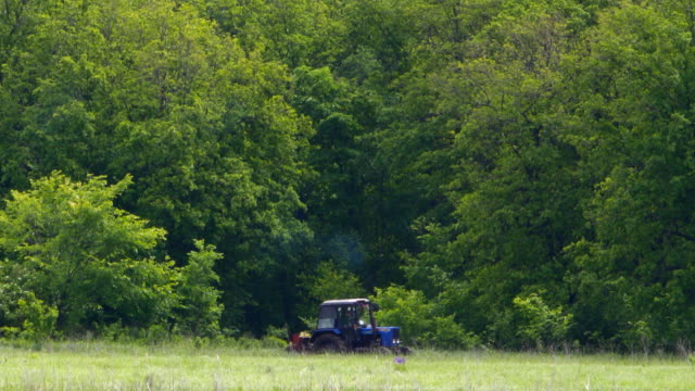Tractor drives along a forest video