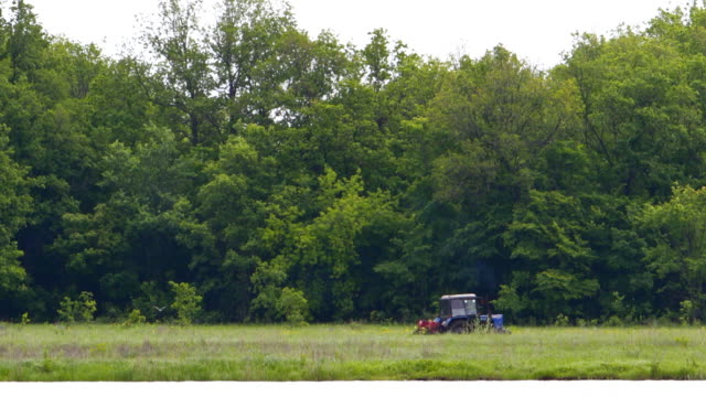 Tractor drives along the forest video