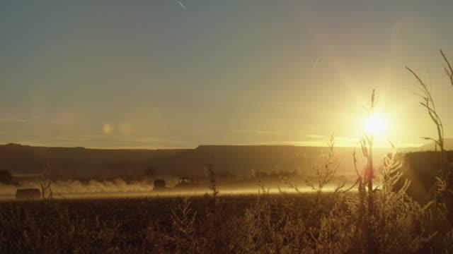 vidéos et rushes de un tracteur conduit à travers un champ de maïs poussiéreuse et brumeux au coucher du soleil avec les montagnes en arrière-plan dans l'ouest, dans le colorado - maïs culture