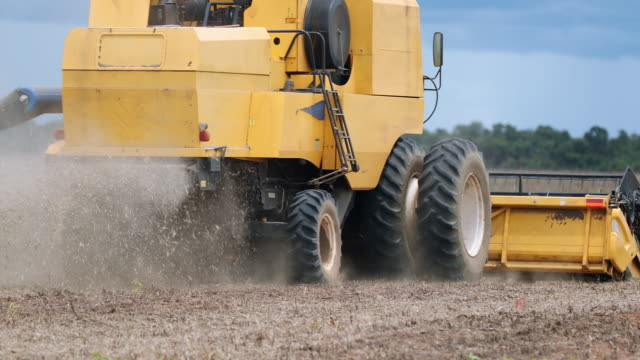 tractor harvesting agriculture field soybean in 4k - agricultural machinery stock videos & royalty-free footage