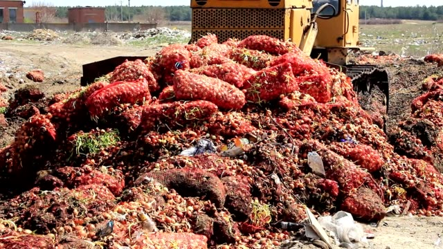 traktor i en stad deponi - food waste bildbanksvideor och videomaterial från bakom kulisserna