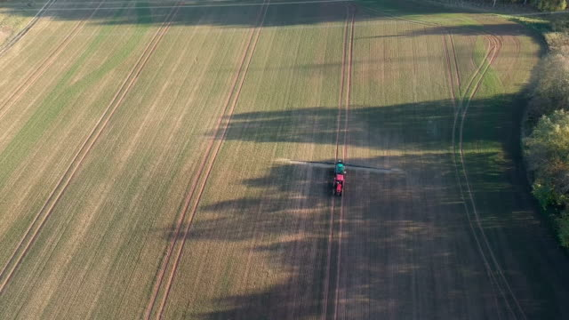 tractor in  spraying autumn crop field , aerial tractor in  spraying autumn crop field with trees shadows , aerial view sowing stock videos & royalty-free footage
