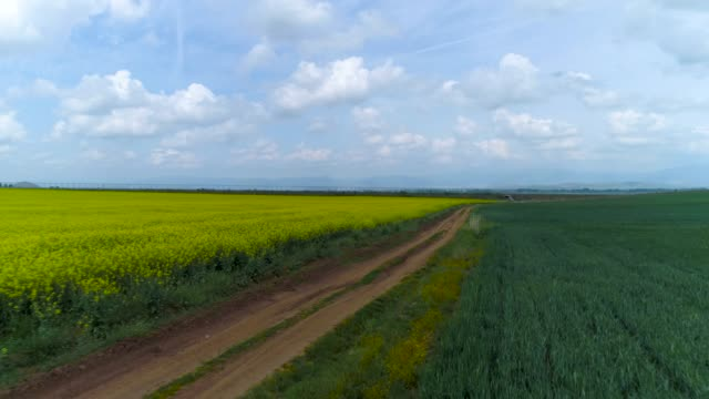 Tractor in the agricultural fields and dramatic clouds video