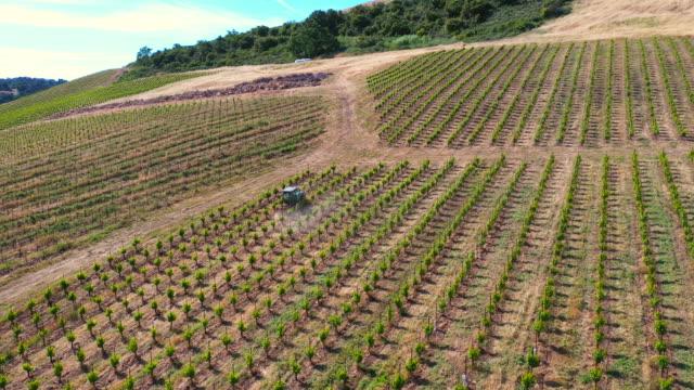 tractor in vineyard - azienda vinicola video stock e b–roll